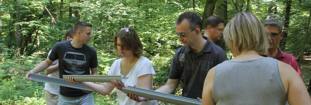 Erlebnispädagogik - Hochseilgarten-Hasloh